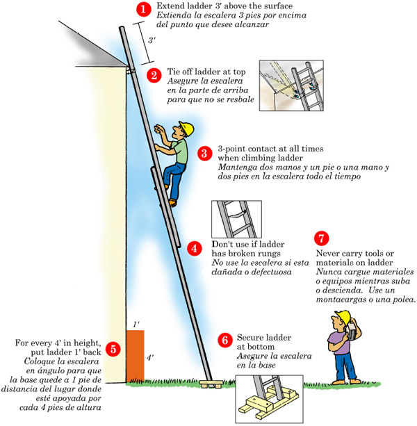 Elcosh 7 Steps To Ladder Safety
