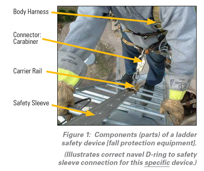 Fixed Ladder Safety Devices Pictures To Pin On Pinterest