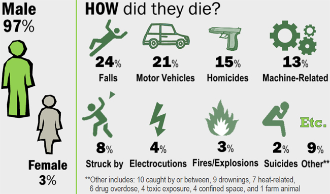 97% male, 3% Female. How did they die? 24% falls, 21% Motor Vehicles, 15% Homicides, 13% Machine-related, 8% struck by falling objects, 4% electrocutions, 3% fires and explosions, 2% suicides, 9% other. Other includes: 10 caught by or between, 9 drownings, 7 heat related, 6 drug overdose, 4 confined space, and 1 farm animal