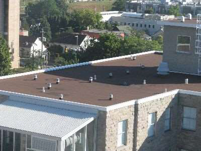 Photo showing permanent roof anchors