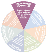 management leadership pie slice graphic