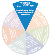 Worker participation pie slice graphic