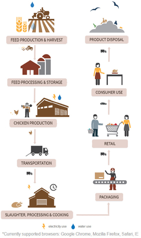 Chicken Supply Chain Visualization: Image shows the chicken supply chain, including feed production and harvest; feed processing and storage; chicken production; transportation; slaughter, processing, and cooking; packaging; retail; consumer use; product disposal.