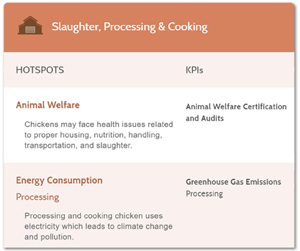 Slaughter, Processing & Cooking: Image shows the hotspots and improvement opportunities for addressing supply chain sustainability in the slaughter, processing and cooking of chicken. It highlights only two issues-- animal welfare and energy consumption. It does not identify any worker safety and health issues although workers that slaughter and process chicken suffer elevated rates of injury and illness.