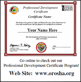 Professional development certificate example