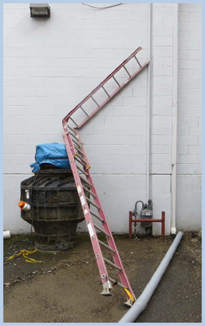 Elcosh Washington Face Report Construction Laborer
