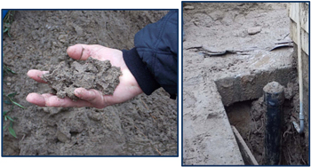 This is a close-up image (left) of a hand holding the soil, and (right) the trench area with soil.