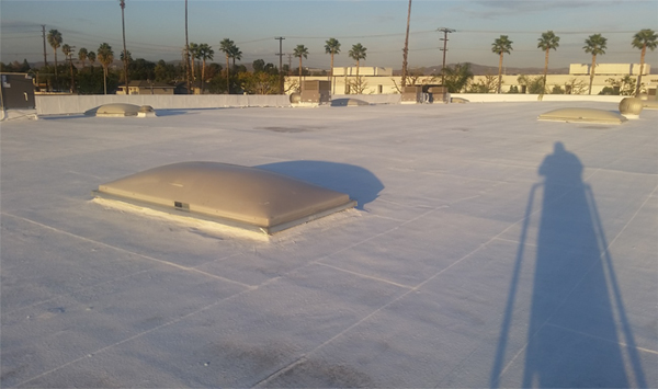 Exhibit 1. The flat roof of the warehouse showing the skylights and AC units.