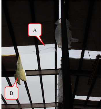 Figure 5. Skylight that collapsed under the roofer (A); insulation that tore (B).