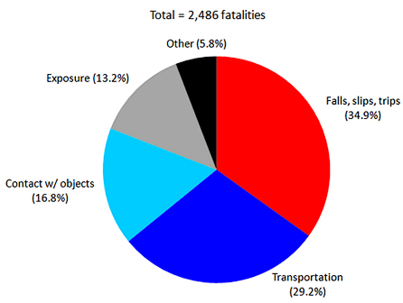 pie chart regarding fatalities
