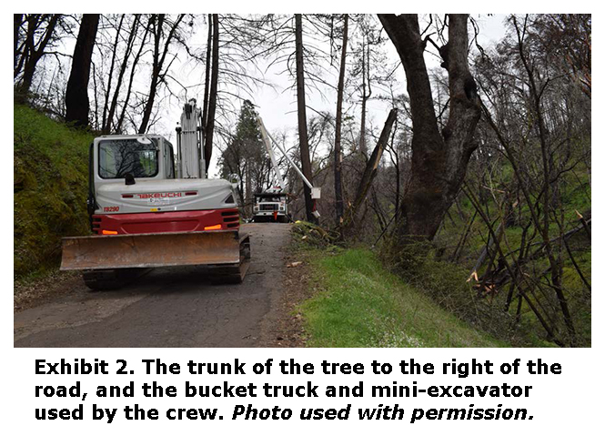 Photo of the trunk of the tree to the right of the road, and the bucket truck and mini-excavator used by the crew